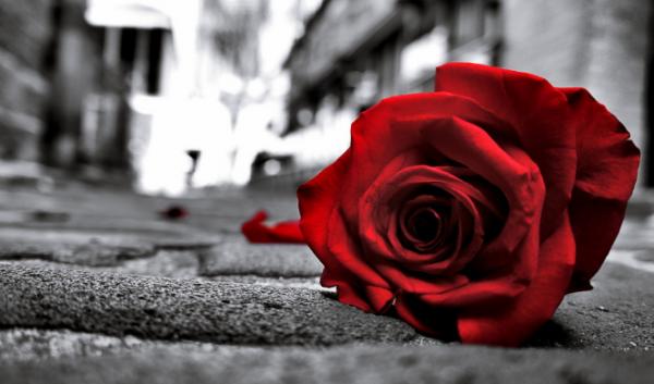 Dedicatoria De Amor No Correspondido